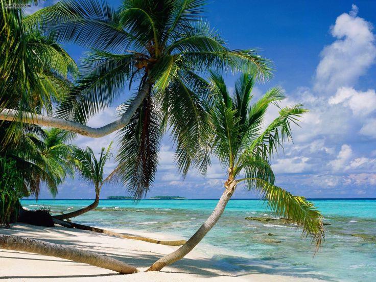tuvalu-island-5